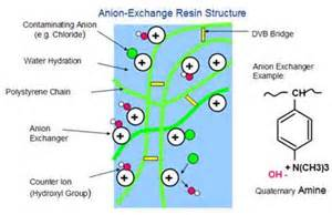 Ion-Exchange Resin Structure